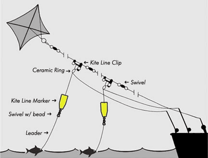 Kite Fishing Line Setup