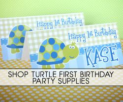 First Birthday Turtle Party Supplies