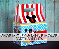 Mickey Mouse and Minnie Mouse Parties
