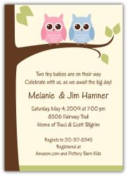 Owls on a Limb Girl-Boy Twins Baby Shower Invitation