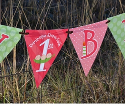 Triplet Girls Peas in a Pod<br>Personalized Happy Birthday Pennant Banner