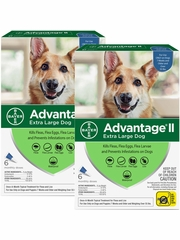 Advantage II for Dogs Over 55 lbs (12 Month)