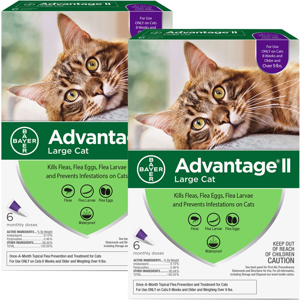 Advantage II Flea Control Large Cat Unless you take preventive measures using a high-quality anti-flea product there is no real way of preventing flea infestations in your cat. Cats often get fleas from other cats or while they are playing out in the backyard. Fleas can not only cause skin irritation, but they are also carriers of dangerous pathogens. Advantage II by Bayer is a great product that can be applied to eliminate existing flea population and as a preventive. This purple pack Advantage is specially formulated for large cats weighing over 9lbs. The product launches a 3-pronged attack by simultaneously destroying adult fleas, larvae, and eggs. The product?s advanced formulation is completely waterproof, which means your cat is free to roam and be in contact with water. The pack contains two tubes which provide two-month protection against fleas. Key Benefits: Veterinarian-recommended treatment kills all life stages of fleas on kittens and cats 8 weeks or older and weighing ove