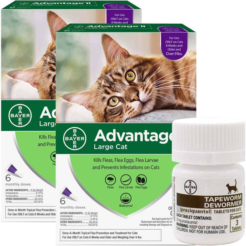 Advantage II Flea Control Large Cat Unless you take preventive measures using a high quality anti-flea product there is no real way of preventing flea infestations in your cat. Cats often get fleas from other cats or while they are playing out in the backyard. Fleas can not only cause skin irritation but they are also carriers of dangerous pathogens. Advantage II by Bayer is a great product that can be applied to eliminate existing flea population and as a preventive. This purple pack Advantage is specially formulated for large cats weighing over 9lbs. The product launches a 3-pronged attack by simultaneously destroying adult fleas, larvae, and eggs. The product?s advance formulation is completely waterproof, which means your cat is free to roam and be in contact with water. The pack contains two tubes which provide a two month protection against fleas. Key Benefits: Veterinarian-recommended treatment kills all life stages of fleas on kittens and cats 8 weeks or older nad weighing ove