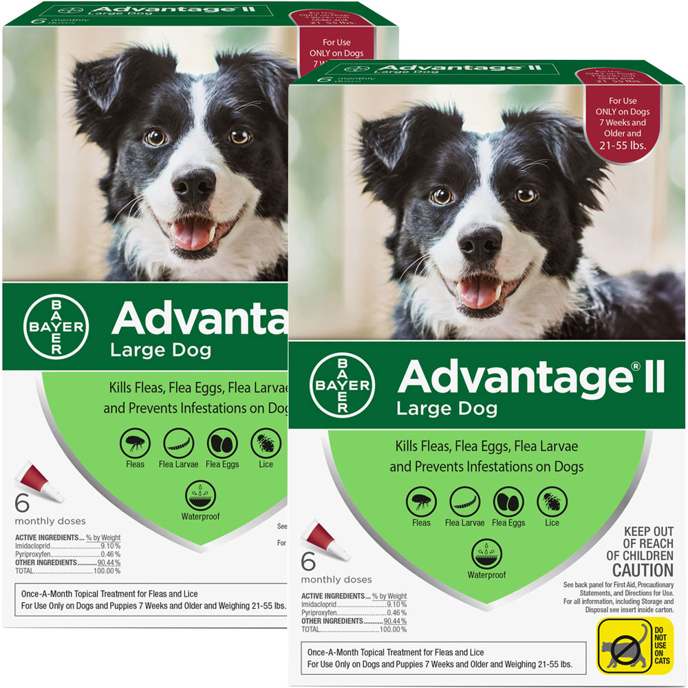 The new and improved Advantage II now offers flea and lice protection for your dog. Flea and lice treatment with Advantage II gives your dog a safe solution that only needs to be applied once a month. Dogs and puppies older than 7 weeks and weighing 21- 55 lbs are fit for this flea and lice killing formula. This formula will kill fleas completely by eliminating their eggs and larvae by using a variety of ingredients and compounds. It contains a fast-acting formula that kills fleas quickly and prevents them from returning. Advantage II uses the compound pyriproxyfen to kill fleas and other insects by interfering with their maturity cycle. Targeting insects, pyriproxyfen does not affect mammals. Other flea killing properties like adulticidal, larvicidal, and ovicidal kill fleas and prevent them from emerging again. Imidacloprid paralyzes fleas so they are killed before biting your dog and also reduce the incidence of flea-related allergies. Kills adult fleas within 12 hours and re-infes