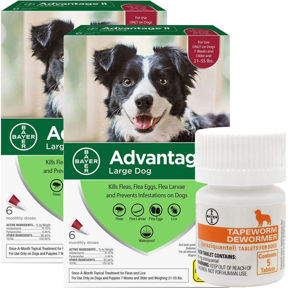 Advantage II for Dogs provides dual protection against fleas and lice reducing annoying, itchy bites. Simple, monthly applications during warm weather months will get rid of fleas and help in the prevention of secondary problems like Flea Allergy Dermatitis (FAD). Advantage® II Benefits: Pet comfort Advantage® II kills fleas fast, through contact? no biting required. This means there is less irritation and discomfort for your dog. Advantage II also works in the prevention of Flea Allergy Dermatitis (FAD). Peace of mind Advantage® II provides multi-stage flea control effectively breaking all flea life-cycle stages for quick and lasting control of flea populations. Versatility Advantage® II?s topical formula works when wet, locks into the lipid (or fat) layer of the skin and remains effective for 28 days. Proven effectiveness Advantage® II is the number 1 selling flea-specific treatment in Canada and has confirmed efficacy after 30 million applications.1 Tapeworm Dew