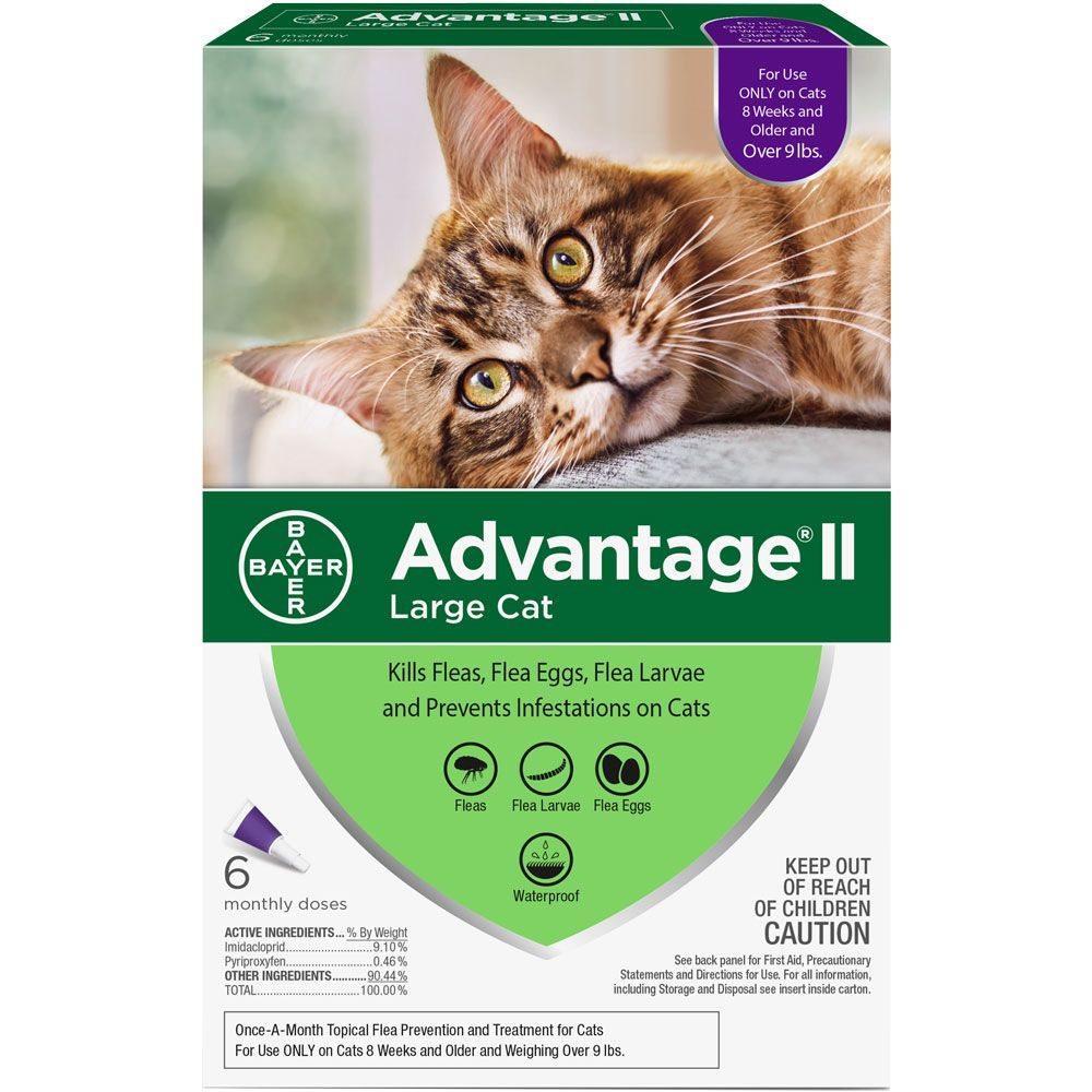 Advantage Ii Flea Control For Large Cats Over 9 Lbs 6