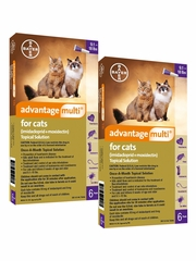 Advantage Multi for Cats 9.1-18 lbs (12 Months)