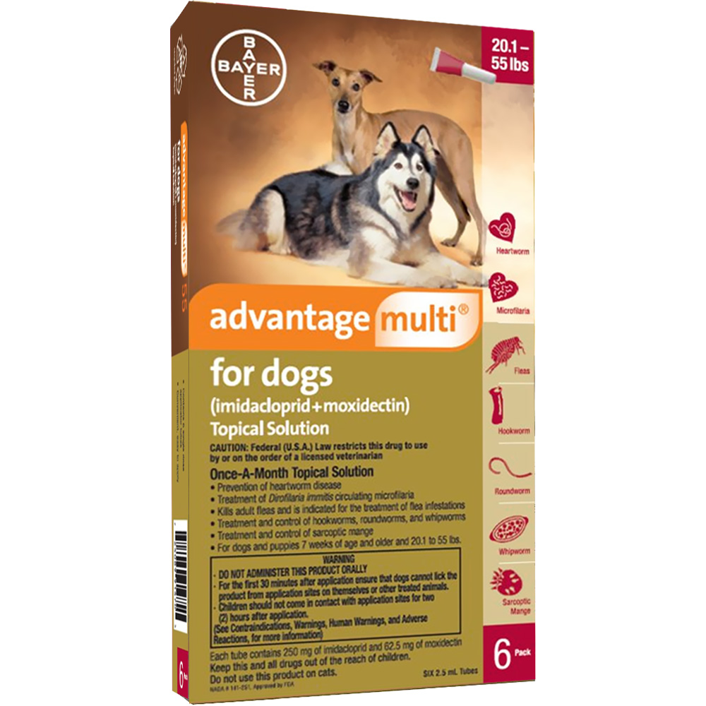 Advantage Multi For Dogs 20 1 55 Lbs 6 Months