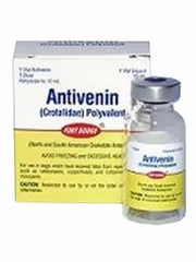 Antivenin (10ml vial) (Manufacturer may vary)