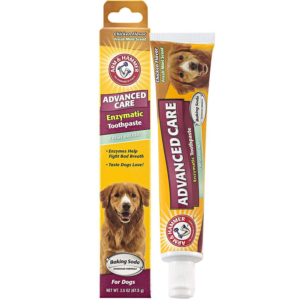 Arm Amp Hammer Enzymatic Toothpaste For Dogs Chicken