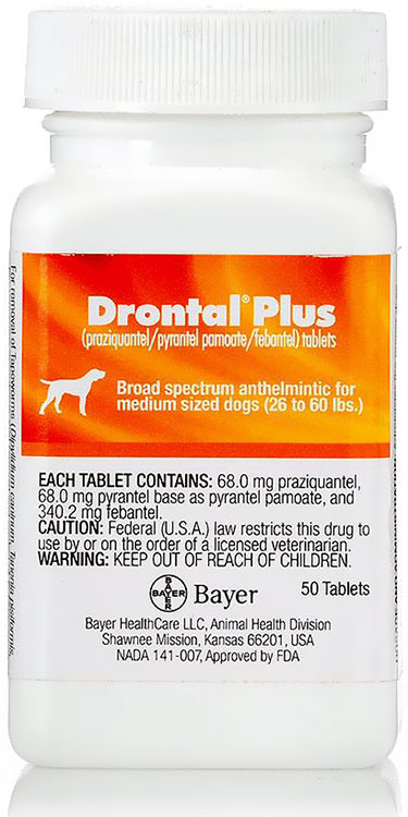 Drontal for Dogs & Cats