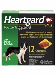 Heartgard Plus for Dogs - 26-50 lbs (12 Chews)