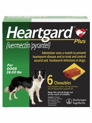 Heartgard Plus for Dogs - 26-50 lbs (6 Chews)