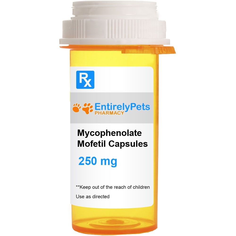 Mycophenolate Mofetil Capsules