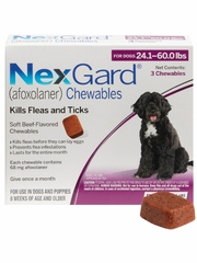 NexGard Chewables for Dogs 24.1-60 lbs (3 Chews) Purple