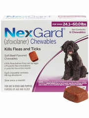 NexGard Chewables for Dogs 24.1-60 lbs (6 Chews) Purple