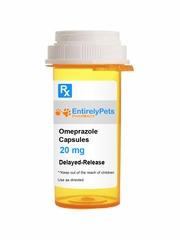 Omeprazole Oral Capsule DR 20mg (per cap) (Manufacturer may vary)