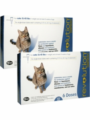 Revolution for Cats - 5.1-15 lbs (12 Doses)