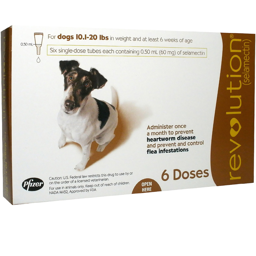 Revolution For Dogs 10 1 20 Lbs 6 Doses