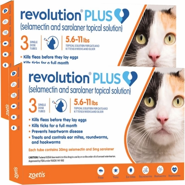 Revolution Plus Orange For Cats 5 6 To 11 Lb 6 Month On Sale Entirelypets Rx