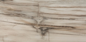 Azuliber Fossil Gris 12 in. x 24 in. Lappato (Semi-Polished) Porcelain Tile