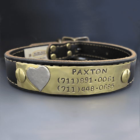 Personalized Leather Dog Collar - Custom Heart Puppy Tag
