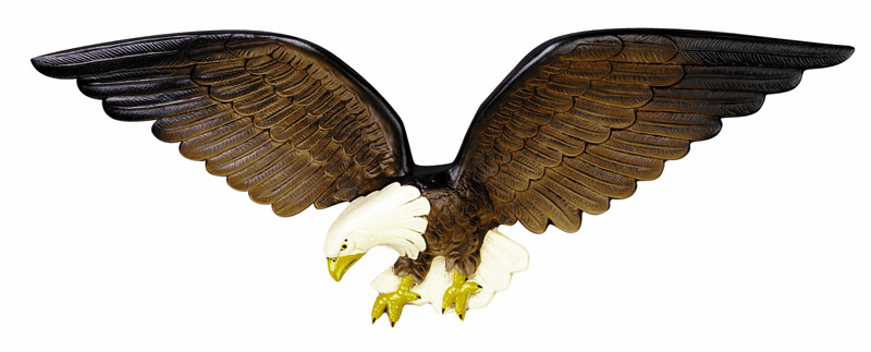 American Bald Eagle - Beautiful Lifelike Color
