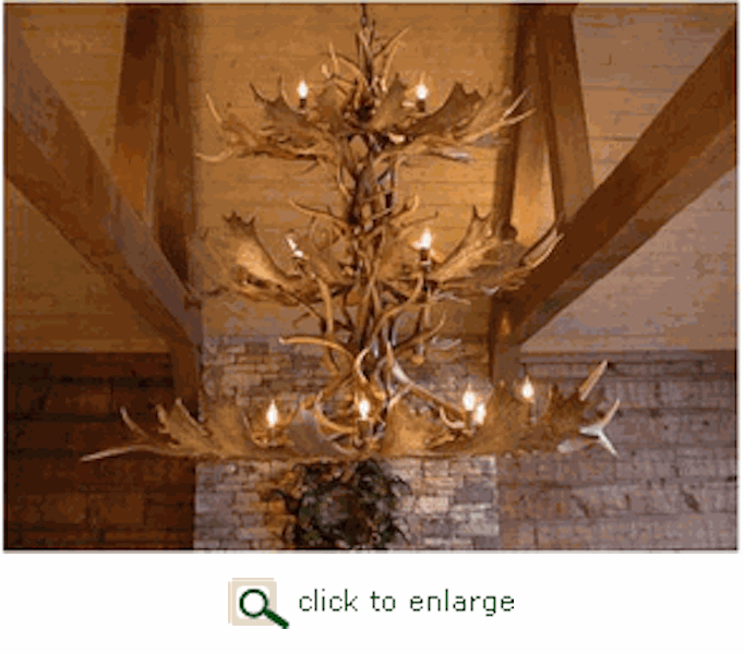 Antler Lighting and Furniture