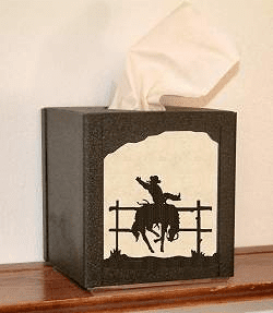Bronco Facial Tissue Box Cover