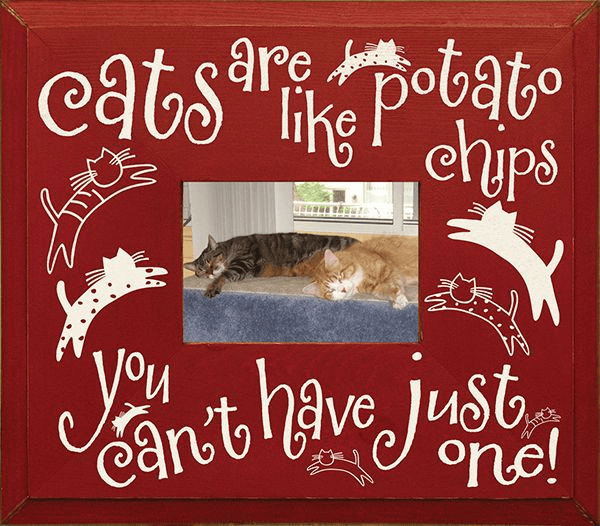 Cats Are Like Potato Chips...Frame