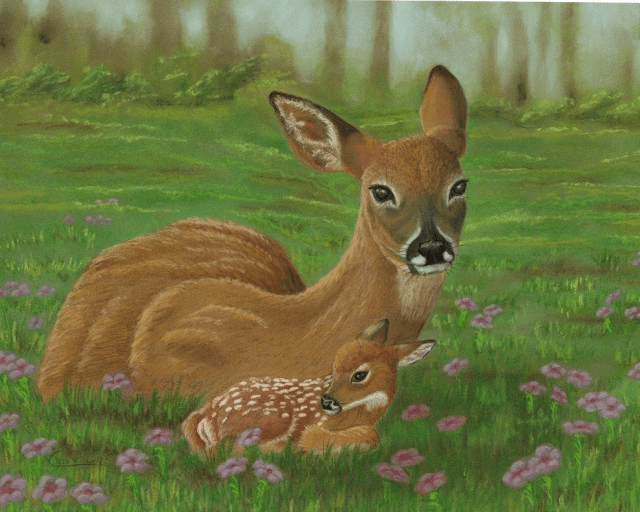 Doe in Flowers