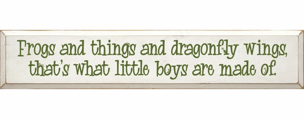 Family & Friend Sign...Frogs And Things And Dragonfly Wings, That's What Little Boys Are Made Of
