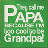 Family & Friend Sign...They Call Me Papa Because I'm Too Cool To Be Grandpa