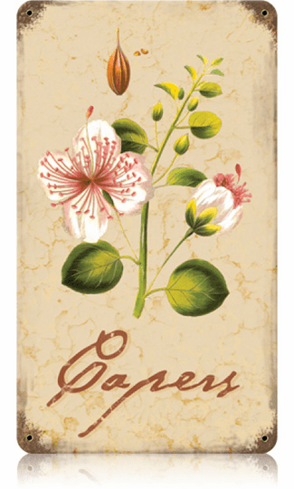 Flowering Capers Plant - Pantry Sign