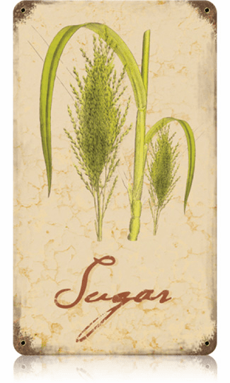 Flowering Sugar Cane - Sugar Cane Sign
