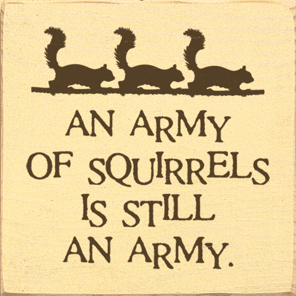 Funny Sign...An Army Of Squirrels Is Still An Army