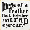 Funny Sign...Birds Of A Feather Flock Together And Crap On Your Car
