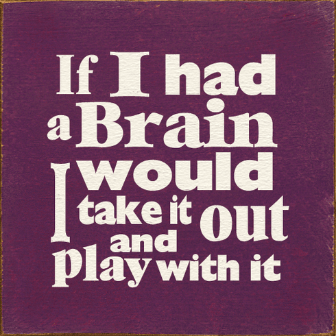 Funny Sign...If I Had A Brain I Would Take It Out And Play With It