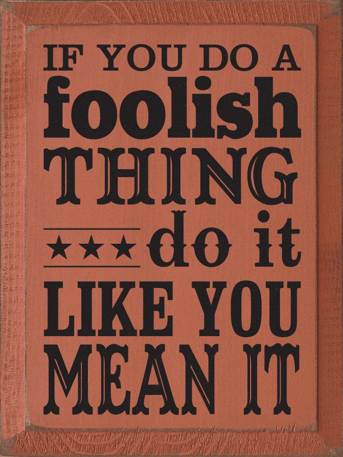 Funny Sign...If You Do A Foolish Thing Do It Like You Mean It