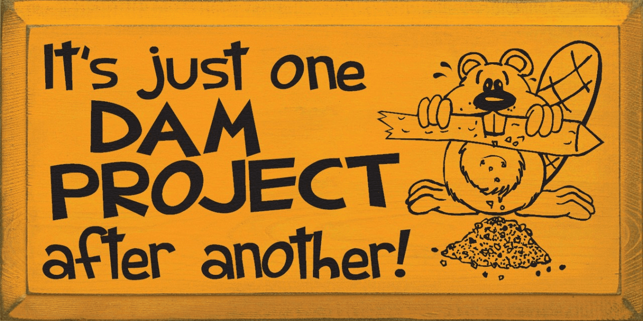 Funny Sign...It's Just One Dam Project After Another! (Beaver Graphic)