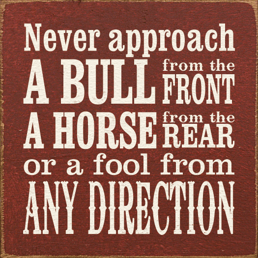 Funny Sign...Never Approach A Bull From The Front, A Horse From The Rear