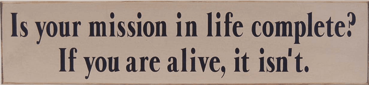 Is Your Mission In LIfe Complete?