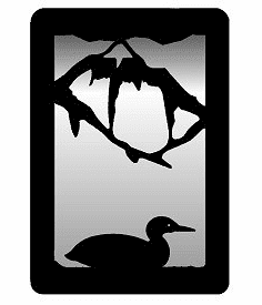 Loon Small Accent Mirror Wall Art