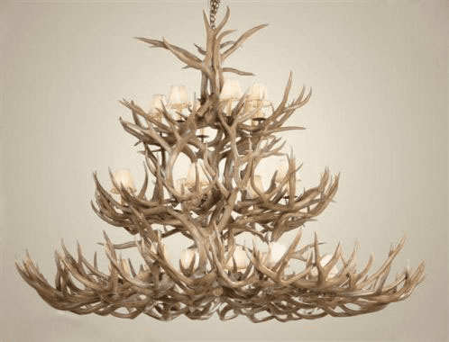 Mule Deer Antler Chandelier with Rawhide Shades
