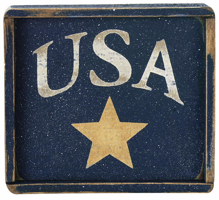 Patriotic Art - USA w/star
