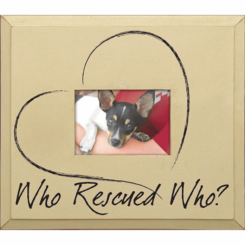 Who Rescued Who? Frame