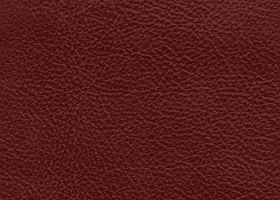 Leather - Fresco Portfolio