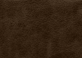 Leather - Galveston Peat