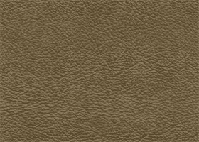 Leather - Salvador-Cypress